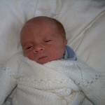 2006 naissance2